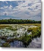 Cloud Reflection In Maine Marsh Metal Print by Jason Brow
