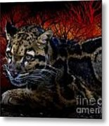 Clouded Leopard Two Metal Print