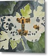 Clouded Magpie Watercolor On Paper Metal Print