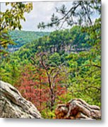 Cloudland Canyon State Park Georgia Metal Print