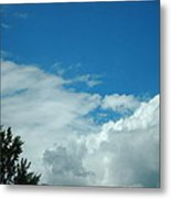 I Touched The Sky Metal Print