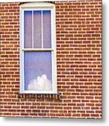 Clouds In My Window Metal Print