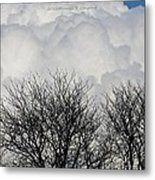 Clouds Named Cotton Metal Print