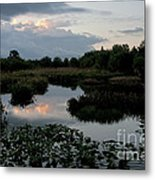 Clouds Over Green Cay Wetlands Metal Print by Mark Newman