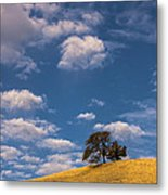 Clouds Over Lone Tree Metal Print