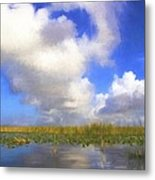 Clouds Over The Grasses Metal Print