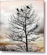 Cloudy Day Blackbirds Metal Print