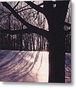 Clove Lakes Park In Winter Metal Print