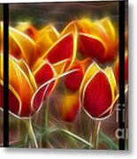 Cluisiana Tulips Triptych  Metal Print by Peter Piatt