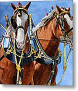 Clydesdale Duo Metal Print