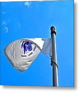 Coast Guard Flag Metal Print
