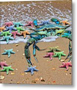 Coastal Crab Collection Metal Print