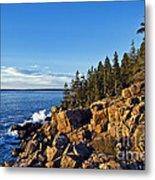 Coastal Maine Landscape. Metal Print