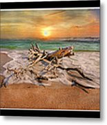 Coastal Morning  Metal Print