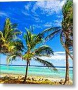 Coastal Palm Trees Metal Print