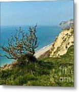Coastal Path - West Bay To Eype  Metal Print