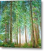 Coastal Redwoods Metal Print