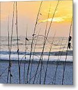 Coastal Sunset Metal Print