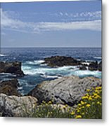 Coastline And Flowers In California's Point Lobos State Natural Reserve Metal Print by Bruce Gourley