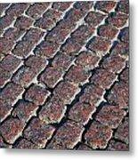 Cobblestones Metal Print