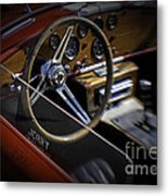 Cobra Metal Print by Fred Lassmann