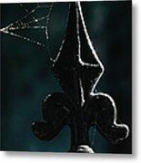 Cobwebs Metal Print