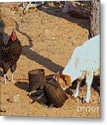 Cock N Goat Metal Print