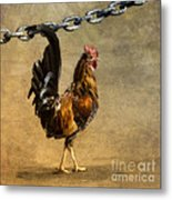 Cock Of The Walk Metal Print