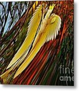 Cockatoo In Abstract Metal Print