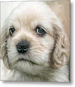 Cocker Pup Portrait Metal Print