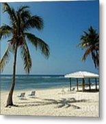 Coconut Beach  Metal Print