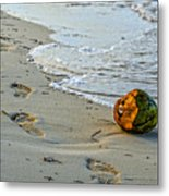 Coconut On The Sand Metal Print