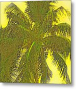Coconut Palm Metal Print