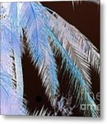 Coconut Palm - Reunion Island - Indian Ocean Metal Print