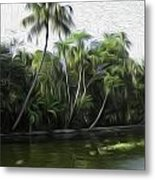 Coconut Trees And Other Plants Lined Up Metal Print