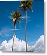 Coconut Trees Metal Print