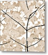 Coffee Brown Leaves Melody Metal Print