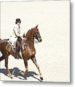 Coffee Saddlebred Metal Print