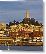 Coit Tower Golden Hour Metal Print
