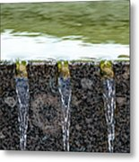 Cold And Clear Water - Featured 3 Metal Print by Alexander Senin