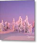 Cold And Colourful Sunset Metal Print