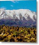 Cold Creek Canyon Nv Metal Print