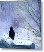 Cold Crow Metal Print