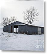 Cold Desolation Metal Print