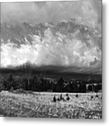 Cold Front Coming Metal Print