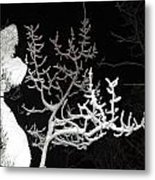 Cold Hearted Metal Print