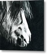 Cold Light Metal Print