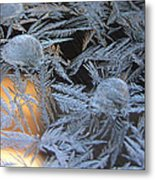 Cold Morning Metal Print