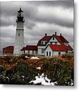 Cold Winters Day-hdr Metal Print