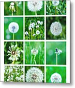 Collage June - Featured 3 Metal Print